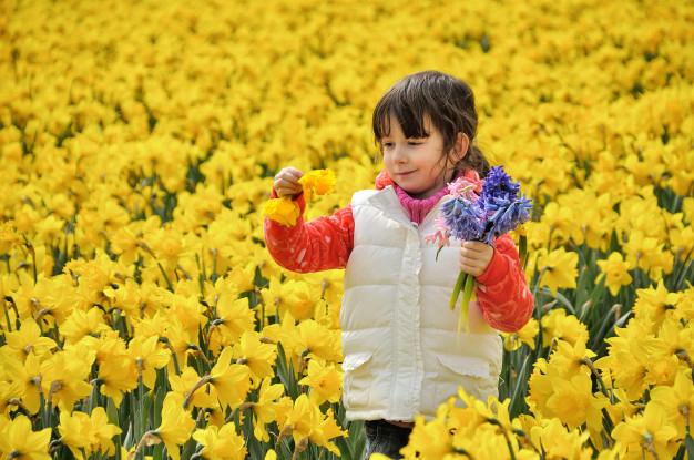ثبت لحظات زیبای زندگی - تبلیغ نویسی